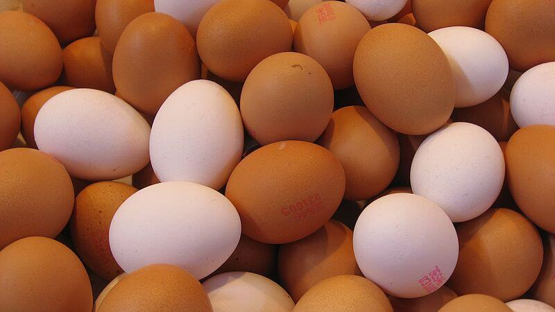 Eggs not linked to cardiovascular risk, despite conflicting advice