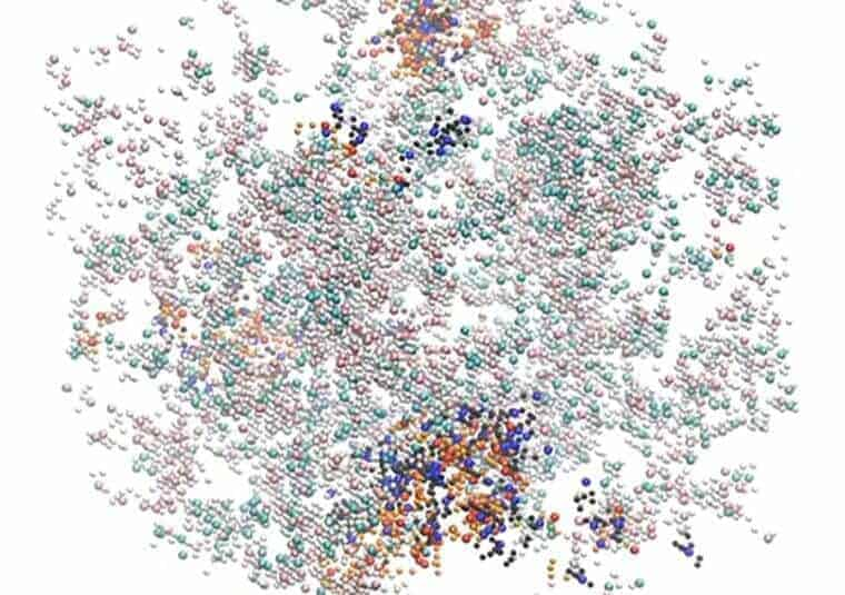 Engineers uncover the design principles of cellular compartments