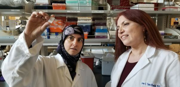 Chemical Compound Produces Beneficial Inflammation and Remyelination That Could Help Treat MS
