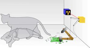 Curiosity Did Not Kill Schrödinger's Cat