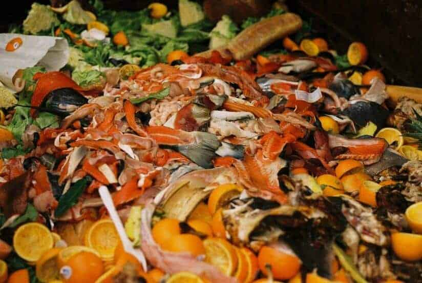 Table scraps can be used to reduce reliance on fossil fuels