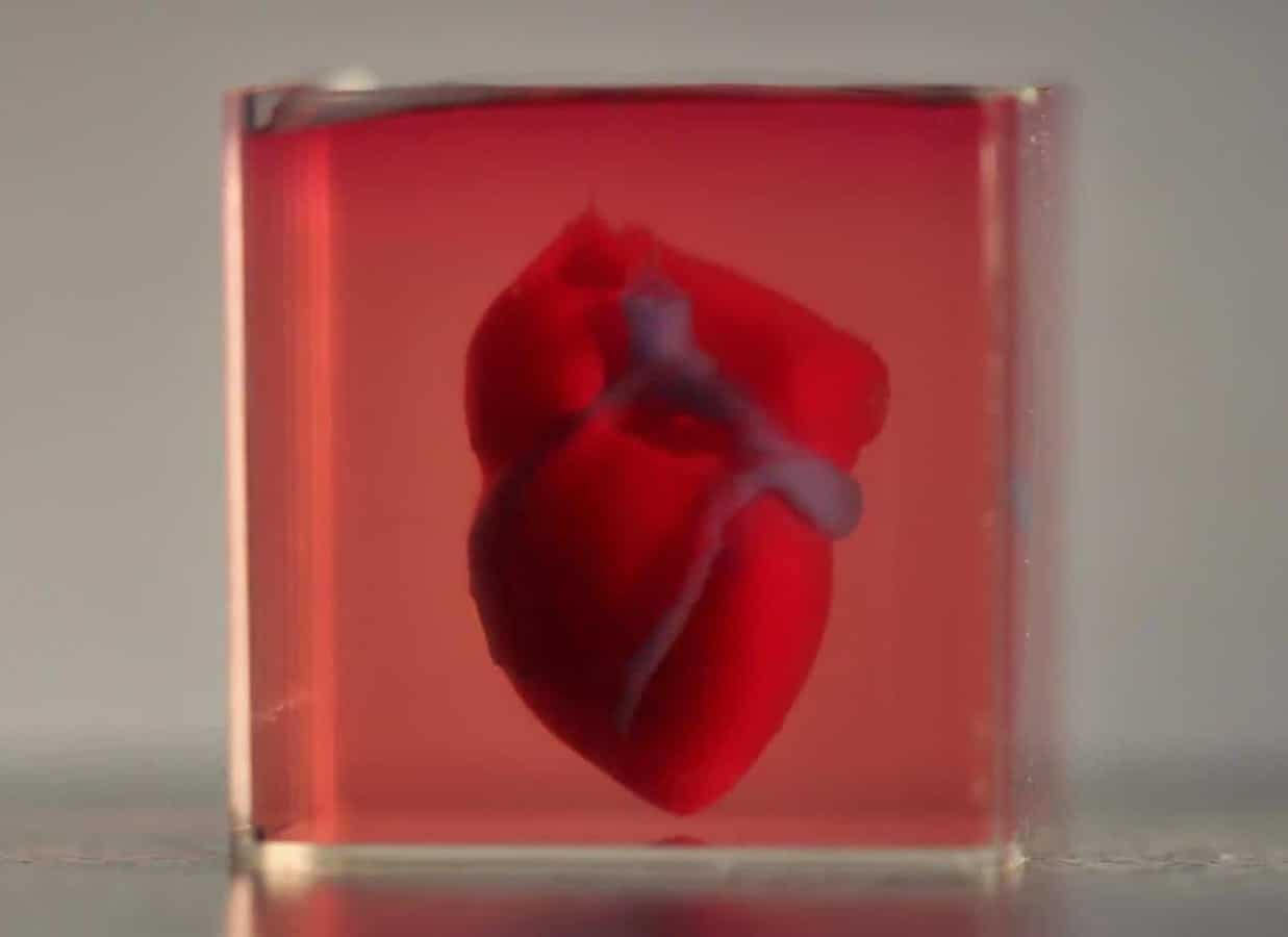 Scientists print first 3D heart using patient's biological materials