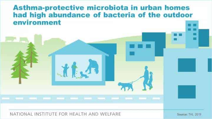 Farm-like indoor microbiota may protect children from asthma also in urban homes