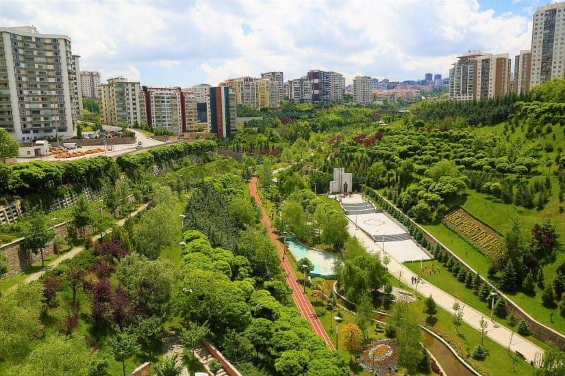 Mobile forests could help cities cope with climate change