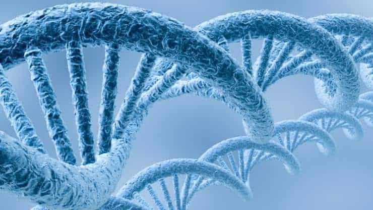 Identifying the Epigenetic Fingerprints of Weapons of Mass Destruction