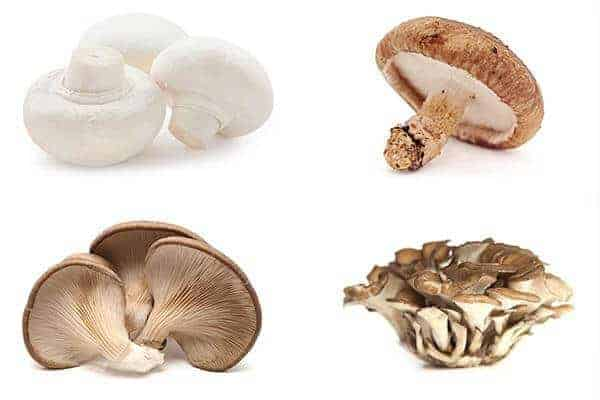 Large, long-term study find link between eating mushrooms and a lower risk of prostate cancer