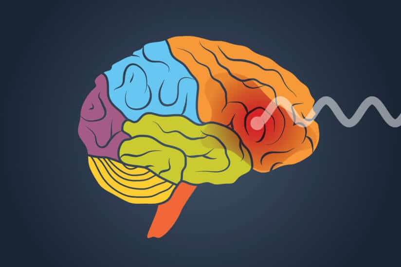 Researchers investigate why certain brains are more vulnerable to addiction
