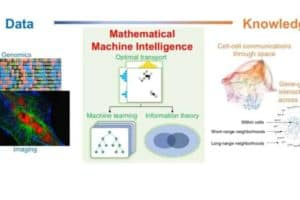 Mathematicians use machine intelligence to map gene interactions
