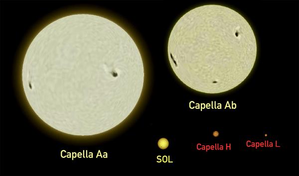 Vergleich der Komponenten von Capella mit der Sonne. Bild: Wikimedia Commons, gemeinfrei; Größen basierend auf [4]