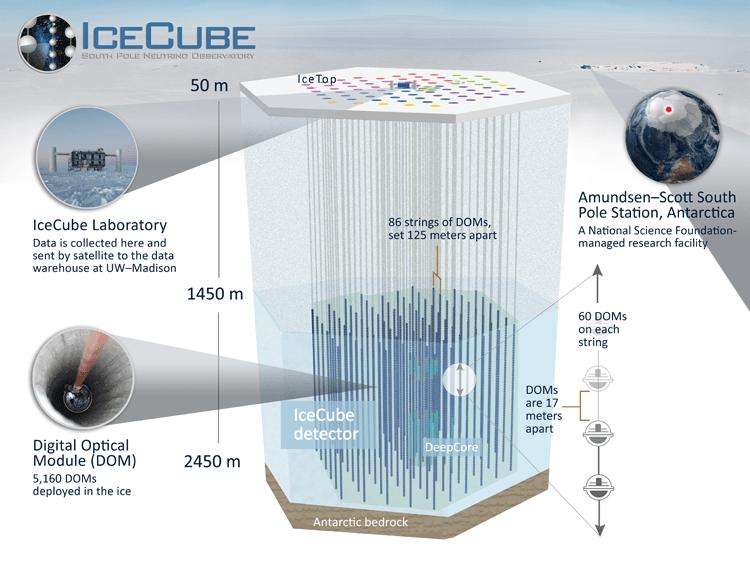 Schematischer Aufbau des Icecube-Neutrinodetektors. Insgesamt 5160 Digitale Optische Module (DOMs) sind zu je 60 verteilt auf 86 Stränge in das antarktische Eis zwischen 1450 und 2450 m Tiefe herabgelassen worden. Das oben im Artikelbild abgebildete IceCube Laboratory sammelt die Signale der DOMs und wertet sie aus. Bild: Icecube/NSF.