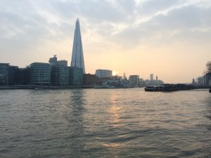 themse-shard