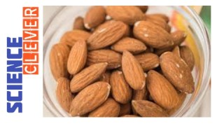 https://scienceclever.com/is-almond-good-for-diabetes-here-is-the-information/
