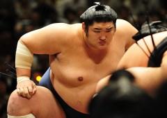 Keiji-Kotomitsuki-Sumo Wrestler
