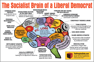 socialist braint