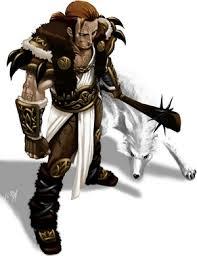 Diablo Druide