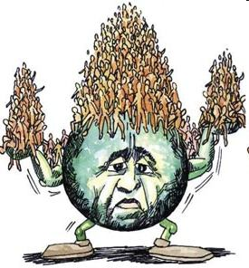 Overpopulation1