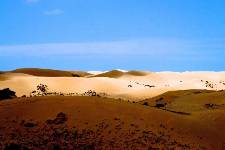 Desertification Effects  Causes  And Examples   Top 10 List     Desertification