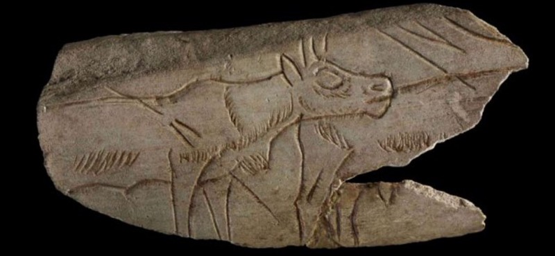 Paleoneurology & Prehistoric Cave Art, Paintings, & Carvings