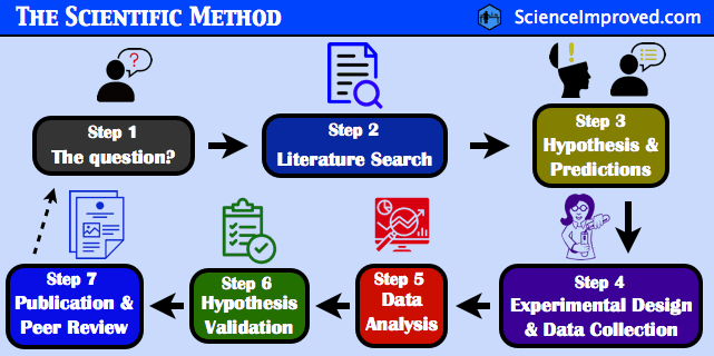 What Is The Scientific Method Steps Definition And Examples Science Improved