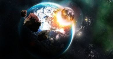 Destruction of Animal from Earth