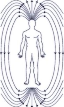 The Heart's Magnetic Field in Man