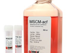 Mesenchymal Stem Cell Medium-animal component free (Cat. #7521)