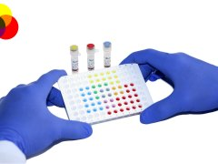 ScienCell's qPCR Loading Indicator Kit, 1,500 reactions