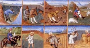 Středověk - ilustrační obrázek. Rukopis rukopisu Ruralia commoda, 14. století, licence obrázku public domain