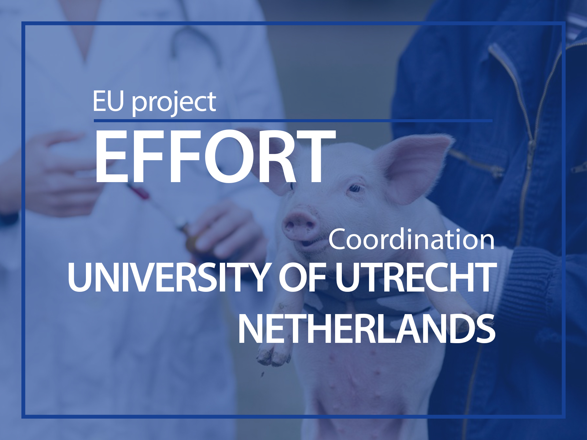 EU project : EFFORT