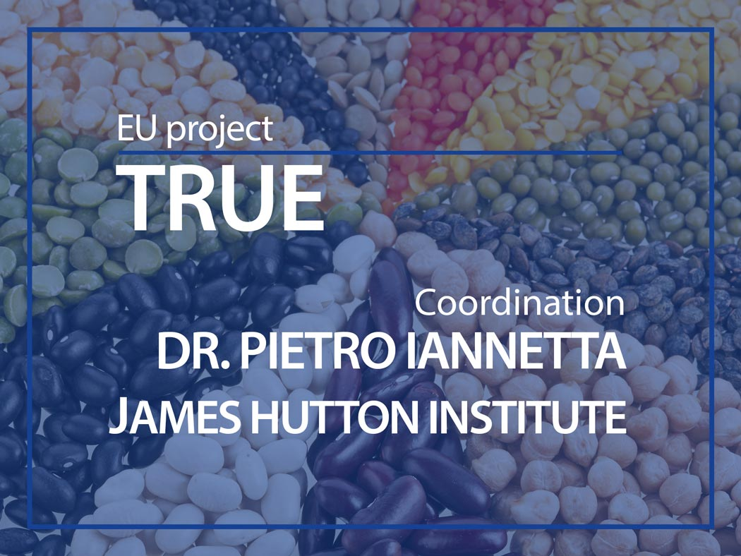 EU project : TRUE