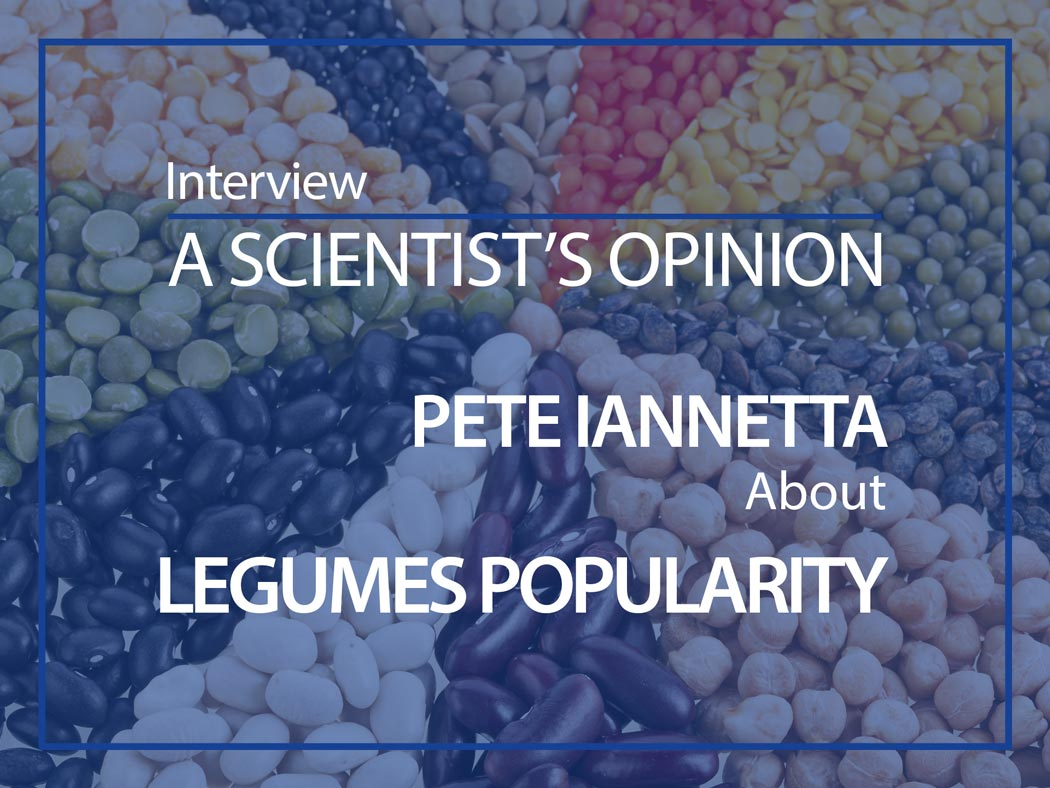 A scientist's opinion : Interview with Pete Iannetta about Legumes popularity