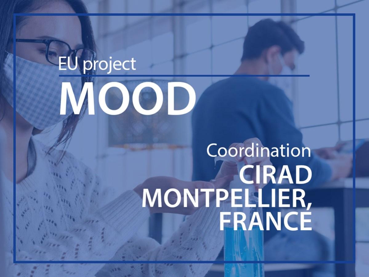 MOOD EU project