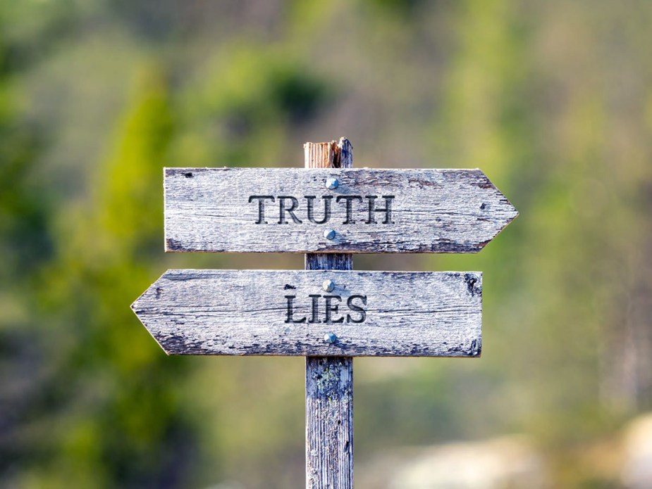 truth lies text carved on wooden signpost outdoors in nature green soft forest bokeh in the background