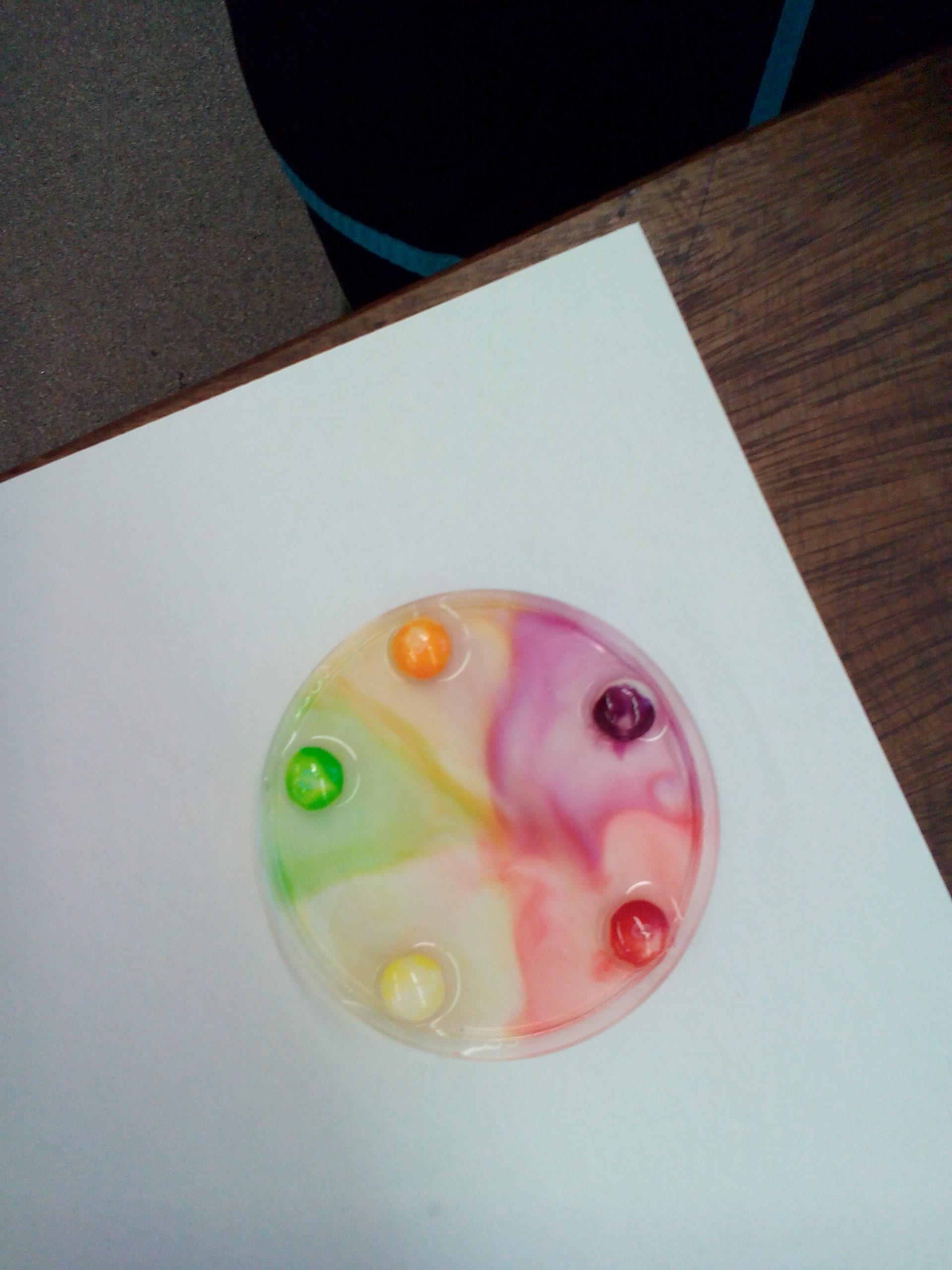 Stem Unlocking The Rainbow Sciencemicroblogs