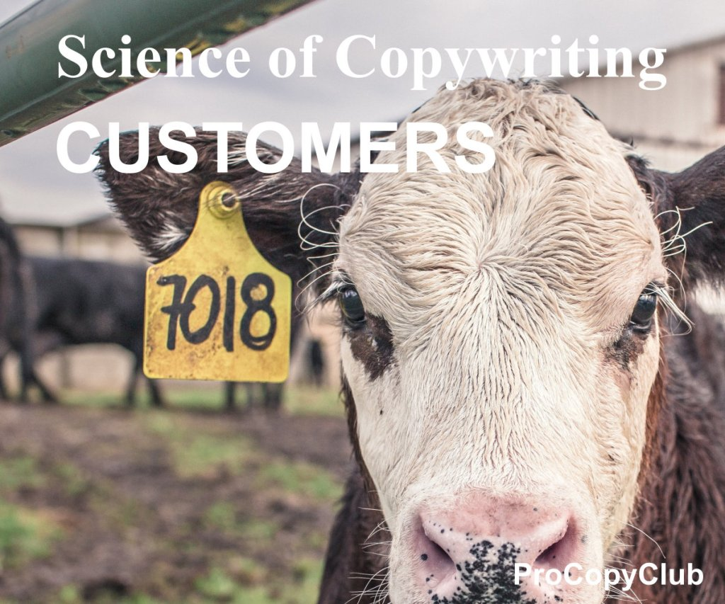 how to get new customers for your copywriting business - image