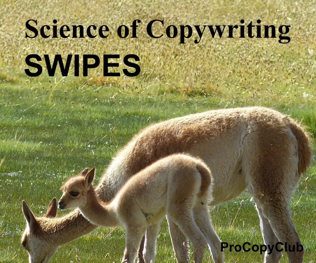 Copywriters And Swipe Files - What You Need To Know
