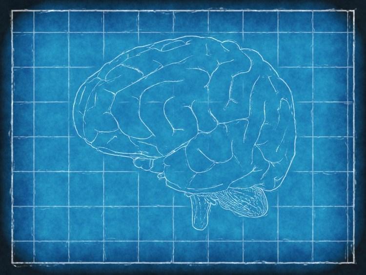 La récupération : a-t-on oublié le cerveau?