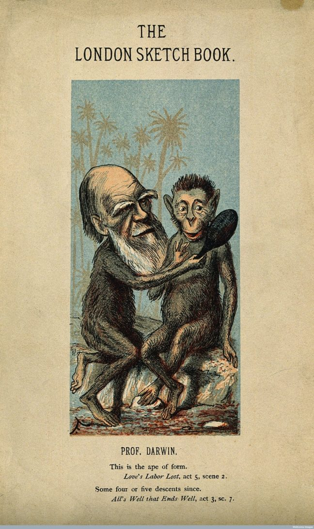 Charles Darwin, as an ape. Source: Wellcome Images, Wellcome Library, London. (CC BY 4.0)