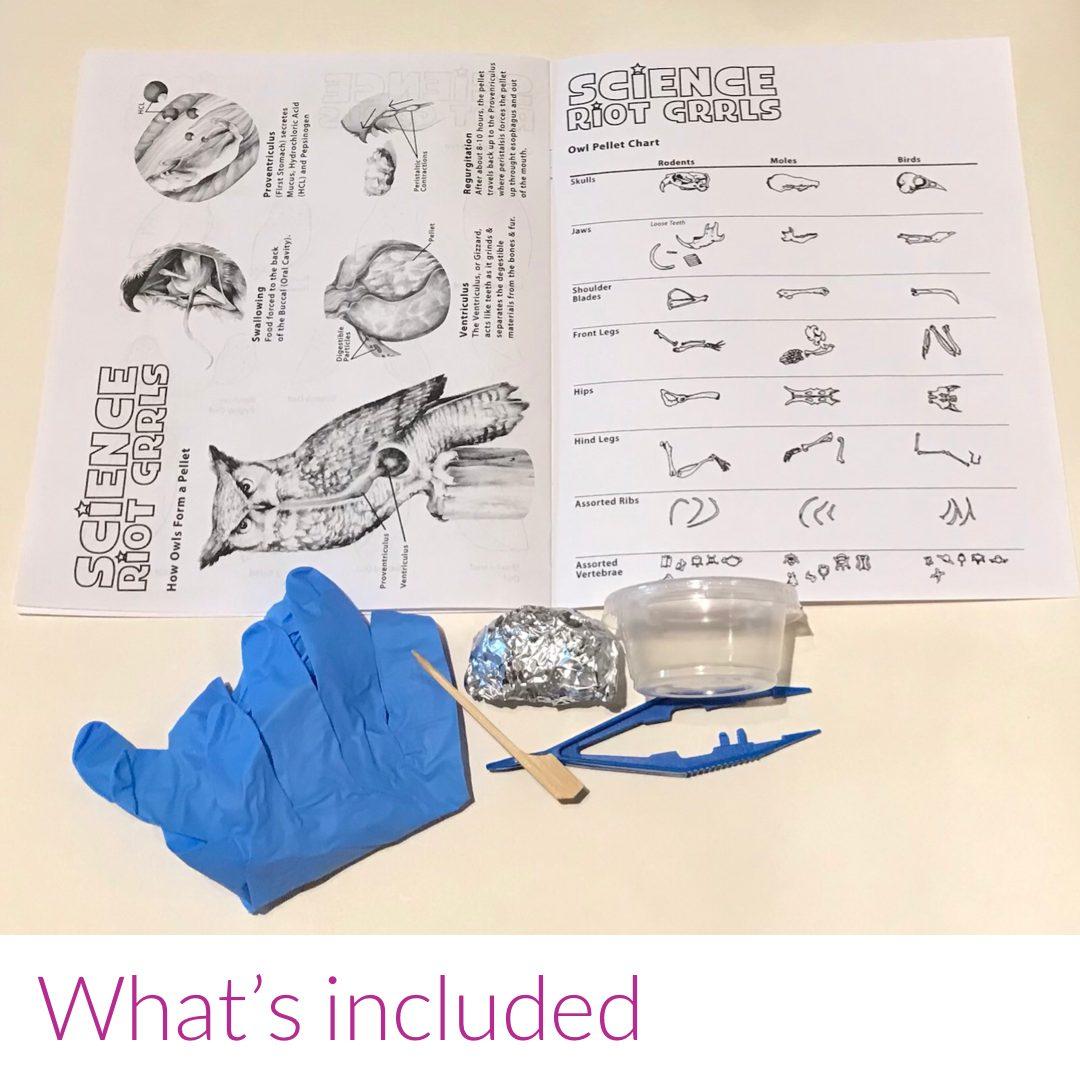 Great Horned Owl Pellet Dissection Kit