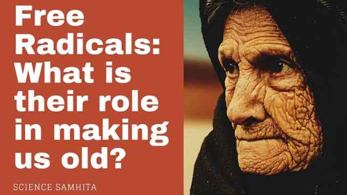 roles-of-free-radicals-aging