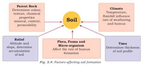factors_affecting_soil_formation