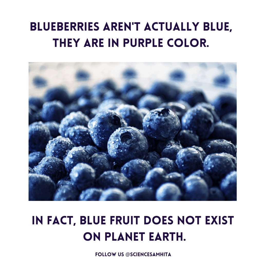science_facts