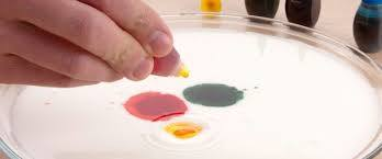 download 1 Cool food color in milk science experiment you can do at home.
