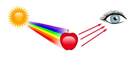 பொதுஅறிவு - கேள்வியும் பதிலும் (தொடர்) Colorapple
