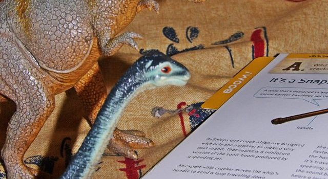 Devious dinos turn to science – a Science Wows Dinovember begins