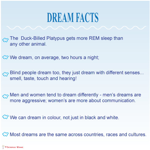 dream-facts
