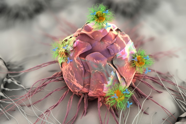 Researchers at MIT are developing an adhesive patch that can stick to a tumor site, either before or after surgery. The patch delivers a triple-combination of drug, gene, and photo (light-based) therapy via specially designed nanospheres and nanorods, shown here attacking a tumor cell.