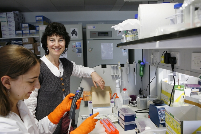 Professor Rebecca Fitzgerald, lead researcher based at the MRC Cancer Unit at the University of Cambridge