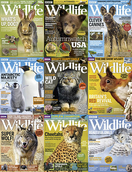 BBC-Wildlife-2018-FullYear BBC Wildlife - 2018 Full Year Collection
