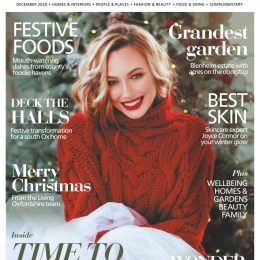 scientificmagazines Oxfordshire-Limited-Edition-December-2020 Oxfordshire Limited Edition - December 2020 Food and Cooking Graphics and Design Hobbies & Leisure time  Oxfordshire Limited Edition